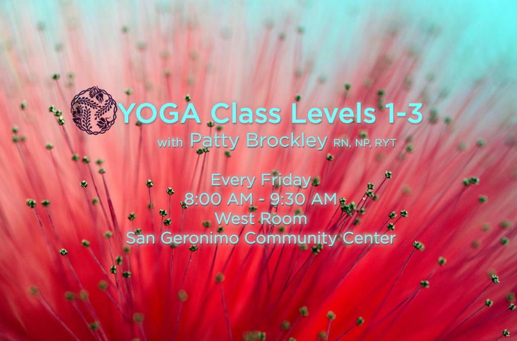 My new Yoga Class
